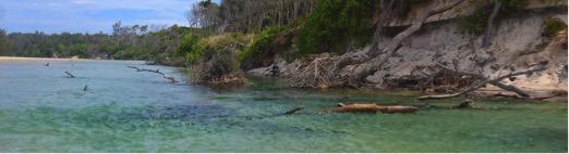 Belongil_Beach_Byron_Bay.jpg