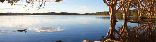 Lake_Ainsworth_Byron_Bay.jpg